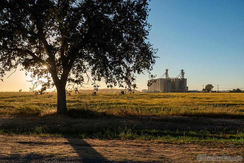 Kimball Lane, Marysville CA Wednesday, September 29, 2021.<br /> Photo Brian Baer