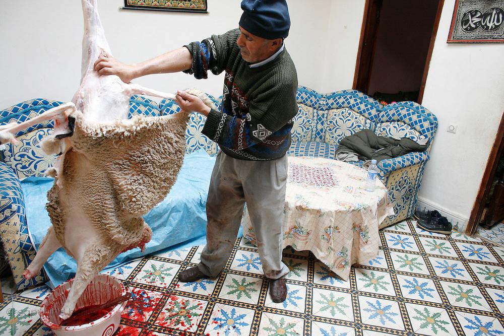 Marrakech, Maroc. 21 Decembre 2007..Aid El Kebir est une des fetes les plus importantes de l'Islam. ..Marrakesh, Morocco. December 21st 2007..The butcher is taking off the sheep's skin after cutting its throat to celebrate Eid Al-Adha. Eid Al-Adha is one of the most important celebrations in the Islam traditions.