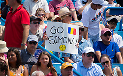 August 19, 2018 - Simona Halep Fans during the final of the 2018 Western & Southern Open WTA Premier 5 tennis tournament. Cincinnati, Ohio, USA. August 19th 2018. (Credit Image: © AFP7 via ZUMA Wire)