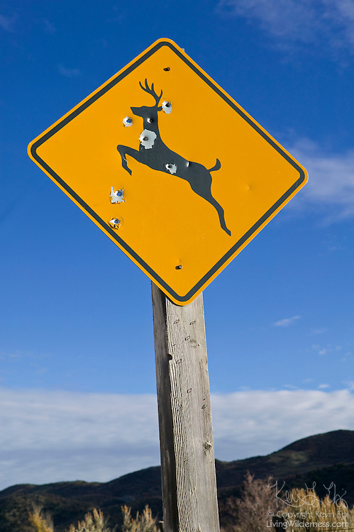"""Big game hunters have repeatedly used a """"deer crossing"""" sign for target practice. This sign was found near Rifle, Colorado."""