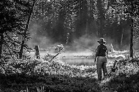 A fly fisherman prepares and studies the water of a Utah backcountry lake as the early morning mist comes off the water.  Black and White version.