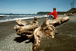 Washington: Olympic National Park. Rialto Beach..Photo copyright Lee Foster, www.fostertravel.com..Photo #: waolym101, 510/549-2202, lee@fostertravel.com
