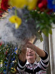 © licensed to London News Pictures. Salisbury Cathedral, Wiltshire UK  13/06/11. ..Anne Vincent from Bridport works on her flower arrangement...Over 500 volunteer flower arrangers meet at Salisbury Cathedral in Wiltshire to help create the spectacular flower festival at Salisbury Cathedral...Please see special instructions for usage rates. Photo credit should read Ian Forsyth/LNP