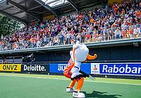 Den Bosch  -   Stockey met volle tribunes,    voor  de Pro League hockeywedstrijd dames, Nederland-Belgie (2-0).  COPYRIGHT KOEN SUYK