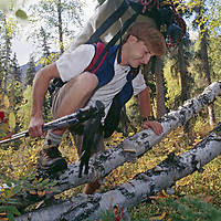 A mountaineer bushwhacks through heavy downed timber.