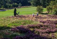LEUSDEN  -  zoeken in de hei op hole 16 , Golfclub de Hoge Kleij  COPYRIGHT KOEN SUYK