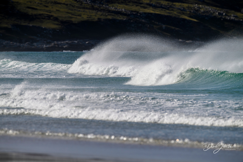 Winblown surf at the Neck, Saunders Island, West Falkland, Falkland Islands