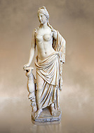 Full length frontal view of 2nd - 1st century BC Roman marble sculpture of Aphrodite (Venus), 'Marine Venus' Type with a dolphin, copied from a Hellanistic Greek original,  inv 6296, Museum of Archaeology, Italy ..<br /> <br /> If you prefer to buy from our ALAMY STOCK LIBRARY page at https://www.alamy.com/portfolio/paul-williams-funkystock/greco-roman-sculptures.html . Type -    Naples    - into LOWER SEARCH WITHIN GALLERY box - Refine search by adding a subject, place, background colour, museum etc.<br /> <br /> Visit our ROMAN WORLD PHOTO COLLECTIONS for more photos to download or buy as wall art prints https://funkystock.photoshelter.com/gallery-collection/The-Romans-Art-Artefacts-Antiquities-Historic-Sites-Pictures-Images/C0000r2uLJJo9_s0