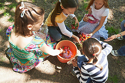 Group of friends washing strawberries in bucket of water at picnic, Munich, Bavaria, Germany
