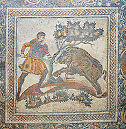 Roman Mosaic of a Wild Boar hunting scene. 4th Century AD from the Roman Villa of Las Tiendas, National Museum Of Roman Art, Merida, Spain . Emerita Augusta (Merida)  was founded as a Roman colony in 25 BC under the order of the emperor Augustus to serve as a retreat for the veteran soldiers (emeritus) of the legions V Alaudae and X Gemina. The city, one of the most important in Roman Hispania, The archeological site in the city has been a UNESCO World Heritage site since 1993.<br /> <br /> Visit our SPAIN HISTORIC PLACES PHOTO COLLECTIONS for more photos to download or buy as wall art prints https://funkystock.photoshelter.com/gallery-collection/Pictures-Images-of-Spain-Spanish-Historical-Archaeology-Sites-Museum-Antiquities/C0000EUVhLC3Nbgw <br /> .<br /> <br /> Visit our ROMAN ART & HISTORIC SITES PHOTO COLLECTIONS for more photos to download or buy as wall art prints https://funkystock.photoshelter.com/gallery-collection/The-Romans-Art-Artefacts-Antiquities-Historic-Sites-Pictures-Images/C0000r2uLJJo9_s0