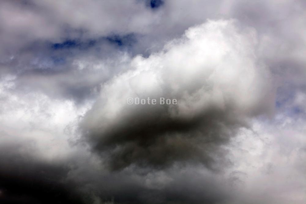 puffy cumulus cloud