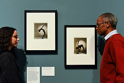 """© Licensed to London News Pictures. 19/11/2019. LONDON, UK. Staff members view two images entitled """"Untitled (Janine Loris (Prevert))"""", 1935, by Dora Maar. Preview of the first UK retrospective of Dora Maar (born Henriette Theodora Markovitch, 1907-97) whose photographs and photomontages became celebrated icons of surrealism.  Over 200 of her works are on display in a career spanning more than six decades at Tate Modern 20 November to 15 March 2020.  Photo credit: Stephen Chung/LNP"""
