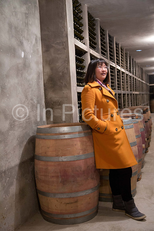 Emma Gao, owner of Silver Heights, poses for pictures in the wine cellar of her winery in Yinchuan, Ningxia Hui Autonomous Region, China on 19 December  2012.  With its dry climates and ample sunshine, and encouraged by the huge boom in Chinese consumer's demand for wine, Ningxia is quickly becoming one of the biggest wine producing regions in China.