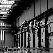 Evil spider, London, England (July 2004)