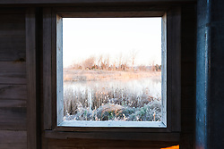 Frost on grasses viewed through viewing blind, Trinity River Audubon Center, Dallas, Texas, USA.