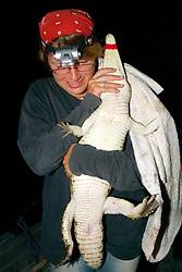 Audrey With Crocodile
