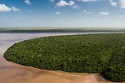 Mangroves<br /> Georgetown area<br /> GUYANA<br /> South America