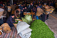 Chine, Province du Sichuan, Emei, marché de thé frais, les petits propriétaires viennent vendre la récolte du jour // China, Sichuan province, Emei, fresh tea market, the pickers sale the leaves from the day crop