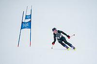 New Hampton School alpine ski team at Loon GS.  ©2018 Karen Bobotas Photographer