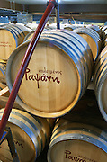 Topping up. Oak barrel aging and fermentation cellar. Tsantali Vineyards & Winery, Halkidiki, Macedonia, Greece.