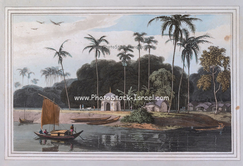 NEAR GANGWAUCOLLY, ON THE HOOGLY (Hooghly) RIVER. THIS view is bounded by impenetrable forests; trees of gigantic growth rise among the underwood which overhangs the banks of the Hoogly, and forms a safe covert for the most fierce and formidable animals. The wild hog and buffalo are natives of this jungle; venomous snakes are nurtured in its luxurious verdure ; and tygers, issuing from these delicious shades, are often bold enough to leap on the boats that ply near the coast: yet the deer, and other animals of the gentlest nature, are still found in the vicinity of their ferocious foes. colour print from the book ' A Picturesque Voyage to India by Way of China  ' by Thomas Daniell, R.A. and William Daniell, A.R.A. London : Printed for Longman, Hurst, Rees, and Orme, and William Daniell by Thomas Davison, 1810. The Daniells' original watercolors for the scenes depicted herein are now at the Yale Center for British Art, Department of Rare Books and Manuscripts,