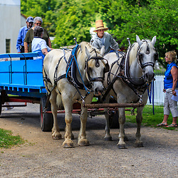 Lancaster, PA – July 12, 2016: Visitors board a horse-drawn farm wagon at the Landis Valley Village & Farm Museum in Lancaster County.