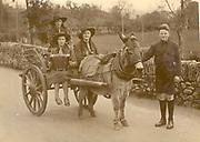 Paddy MacMonagle holds the donkey for his friends in Killarney 1936.<br /> Photo Daniel MacMonagle