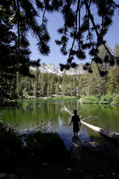 MAMMOTH, CA, AUG 22, 2006:  A young boy walks on a dead tree while enjoying the view from Emerald Lake during a hike  in Mammoth, California  on August 22, 2006  (Photograph by Todd Bigelow/Aurora).