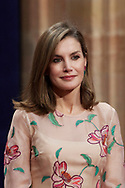 Queen Letizia of Spain attended an audience with Princesa de Asturias Awards 2017 winners at the Reconquista Hotel on October 20, 2017 in Oviedo, Spain.