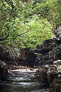 The landscape in the Kavak Caves near Uruyen in Canaima National Park, Venezuela