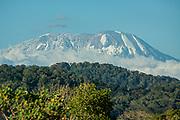 View of Kilimanjaro mountain, Tanzania, Africa