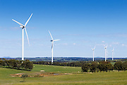 wind turbines from a wind farm in a rural paddock in the countryside near rural Glen Thompson, Victoria, Australia <br /> <br /> Editions:- Open Edition Print / Stock Image