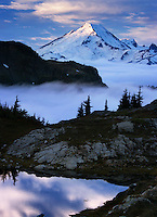 Mt. Baker Wilderness Area; North Cascades, above the fog, Yellow Aster Butte