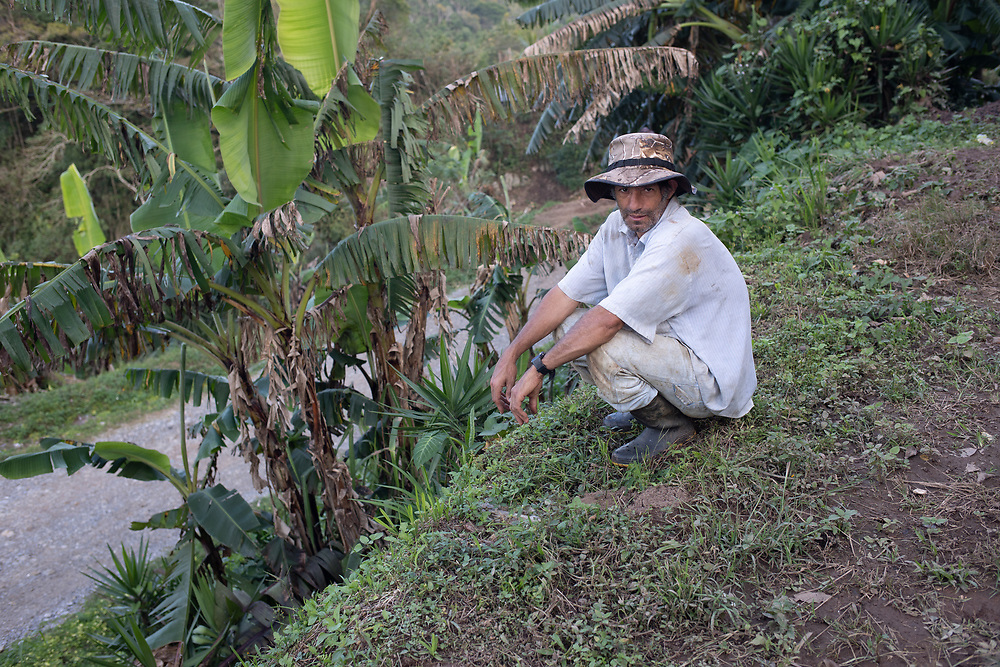 """Prudencio Fernández, El Zapote, Santa Bárbara, Honduras. """"There are two big landslides, one each side of the road where we are. All the other families have gone from here now, they've left. I'm only here to harvest the coffee I can, I'm picking on my own. A lot of the coffee dropped while it was green, there was a lot of rain, amazing amount of rain, so the leaves and coffee dropped. But there's some left and I'm picking it before I leave. There has been some help here, people have come to give us food, but the government hasn't even come to take a look."""""""