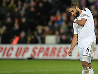 Swansea City's Ashley Williams holds his shoulder in pain during the game<br /> <br /> Photographer /Ashley CrowdenCameraSport<br /> <br /> Football - Barclays Premiership - Swansea City v Chelsea - Saturday 17th January 2015 - Liberty Stadium - Swansea<br /> <br /> © CameraSport - 43 Linden Ave. Countesthorpe. Leicester. England. LE8 5PG - Tel: +44 (0) 116 277 4147 - admin@camerasport.com - www.camerasport.com