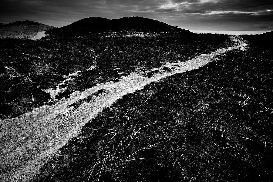 """SNIP from Blog: """"Then something happened. The light changed. I noticed a hint of sunshine in the far distance over the Great Orme at Llandudno. I sprinted down from the light and from thinking the day was over, I was becoming excited again. On my way back to the beach, I realised that half the island was in fact black, gorse-burnt swathes of grassland. Amongst the smoky dark cinder-land were veins of pale sandy tracks connecting main footpaths. They looked wonderful in contrast, small defined limbs amongst the ravaged land."""""""