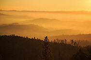 Foggy sunrise view from Clif Family's Croquet Vineyard on Howell Mountain.