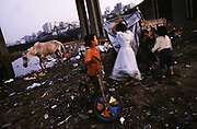 Roma children with a starving horse under the motorway bridge. Roma Gypsies on the outskirts of the city, making a living by recycling the city's rubbish. Kagithane Istanbul 2005...Roma Gypsies left Rajasthan in India a thousand years ago, in the ninth and tenth centuries. They were pushed west by the Ottoman Muslim Empire as it moved through Persia towards the frontiers of Europe. They entered Europe in the foutrteenth century and were slaves in Romania and Moldavia until the mid 1850s. There are about 15 million Roma gypries in the world, about 12 million who live in Europe. they are Europe's largest ethnic minority. They have rich traditions and culture, their own language. They are renowned for their prowess in music and dance; they are also skilled craftsman, metal roofmakers, silver and goldsmiths. Their traveling and nomadic lifestyle which grew from a necessity to find work, and because they were often moved on from one place to the next, has given them both a liberty but also marks them as different and they are often feared by sedentary peoples, who label and scapegoat them. They are hardy survivors and live in the brunt of racism and prejudice, often marginalised, living in poverty, without proper human rights afforded to them..