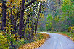 October 2009: Leaves turn to auburn and fall to the ground in the fall along a deserted stretch of rural road west of Galena. Sights to see in and around Galena Illinois.