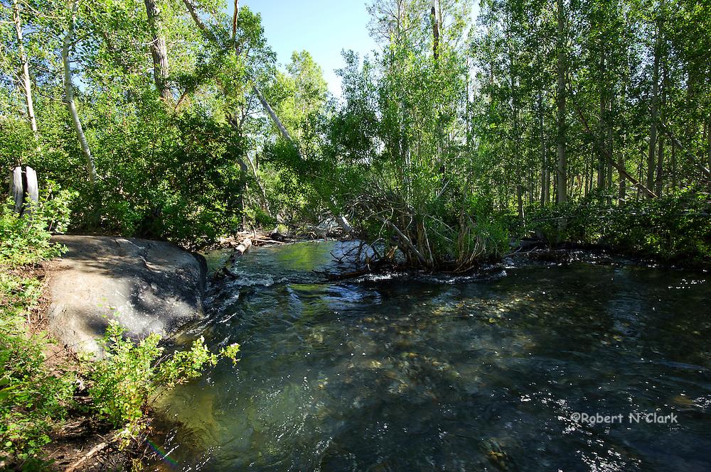 McGee Creek area in the California High Sierra
