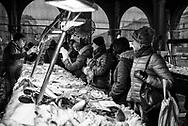 Fish Market Venice Feb 2018
