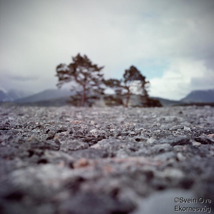 Stones.<br /> Photo: Svein Ove Ekornesvåg