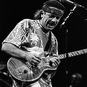 ALLENTOWN - AUGUST 5: Guitarist Carlos Santana performs at the Allentown Fairgrounds on August 5, 1995, in Allentown, Pennsylvania. ©Lisa Lake