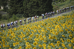 July 24, 2018 - Bagneres De Luchon, FRANCE - Illustration picture shows the pack of riders in action, passing a field of sunflowers during the 16th stage of the 105th edition of the Tour de France cycling race, 218km from Carcassone to Bagneres-de-Luchon, France, Tuesday 24 July 2018. This year's Tour de France takes place from July 7th to July 29th...BELGA PHOTO YORICK JANSENS - FRANCE OUT (Credit Image: © Yorick Jansens/Belga via ZUMA Press)