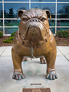 """Gonzaga basketball mascot, the """"Zag"""" bulldog. Gonzaga University is a private Roman Catholic university located in Spokane, Washington, United States. Founded in 1887 by the Society of Jesus, it is one of 28 member institutions of the Association of Jesuit Colleges and Universities and is named after the young Jesuit saint, Aloysius Gonzaga. The campus houses 105 buildings across 131 acres (437,000 m²) of grassland along the Spokane River, in a residential setting half a mile (800 m) from downtown Spokane. The university was founded by Father Joseph Cataldo, SJ, an Italian-born priest and missionary who wished to create a Catholic school in the Pacific Northwest for local Native Americans."""