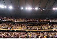 29 June 2013; British & Irish Lions supporters during the game. British & Irish Lions Tour 2013, 2nd Test, Australia v British & Irish Lions, Ethiad Stadium, Melbourne, Australia. Picture credit: Stephen McCarthy / SPORTSFILE