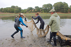 Earthwatch Team Working WIth Nets