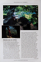Story on Athulla, a 15-year old boy learning the job of elephant-keeper (or mahut) in the  Sri Lankan jungle. Published in National Geographic Spain in June 2000 after having been published in the National Geographic France in March 2000.