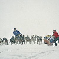 Great Slave Lake, Northwest Territories, Canada.A dog team mushes across frozen Great Slave Lake.