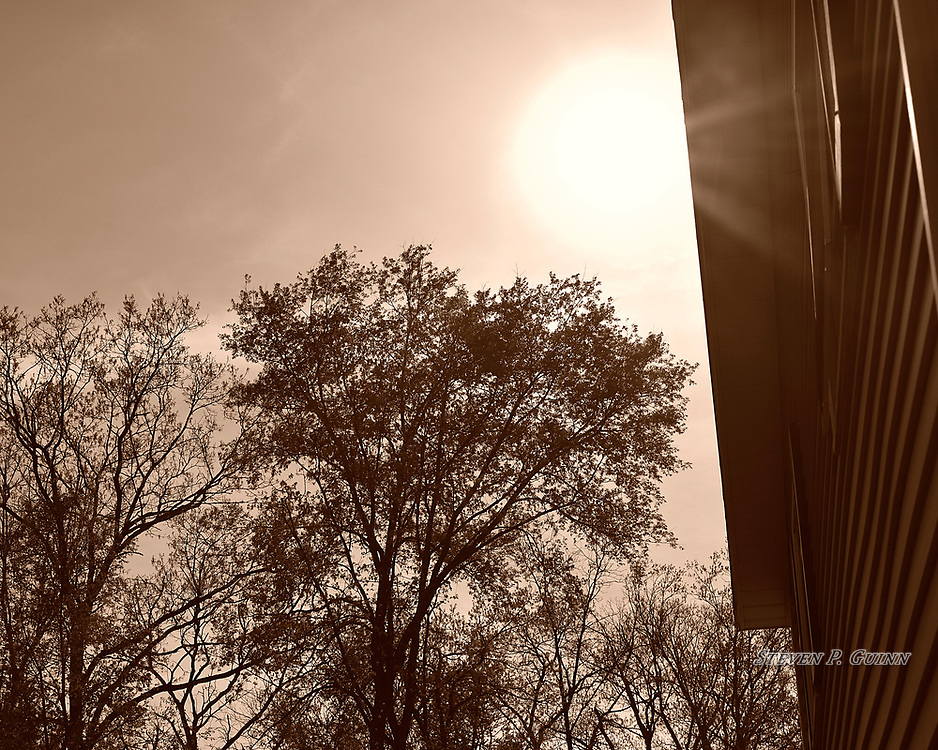 """I captured this nature portrait in my yard on April 25th, 2017. Since it was sunny with a clear sky on this day, I decided to grab my camera and capture some photos. What caught my eye about this scene was how the sun was above the treetops and just beginning to pass over the house; as well as the sunlight reflecting off of the side of the house. Another element that I wanted to emphasize are the rays of the sun under the eaves. I also like the trees and their branches add different patterns that contrast well with the bright background. I chose sepia split-toning because it added the most contrast between the shadows and light.<br /> <br /> Printed on Hahnemühle Bamboo paper. Limited to 150 productions per size.<br /> <br /> Framed prints are available in 20"""" x 16"""", 30"""" x 24"""", 40"""" x 30"""", and 50"""" x 40"""" sizes."""